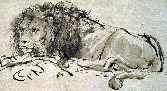 """""""Leão deitado"""", desenho de Rembrandt"""
